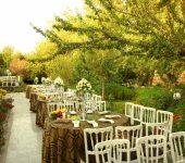 باغ تالار تک درخت, باغ عروسی تک درخت