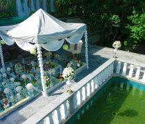 باغ عروسی تک درخت, باغ تالار عروسی تک درخت