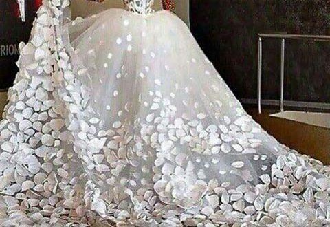 عروسی مجلل, گرانترین لباس عروس