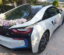 ماشین عروس باغ ایرانی