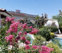 باغ تالار پارسه تخت جمشید فیروز بهرام